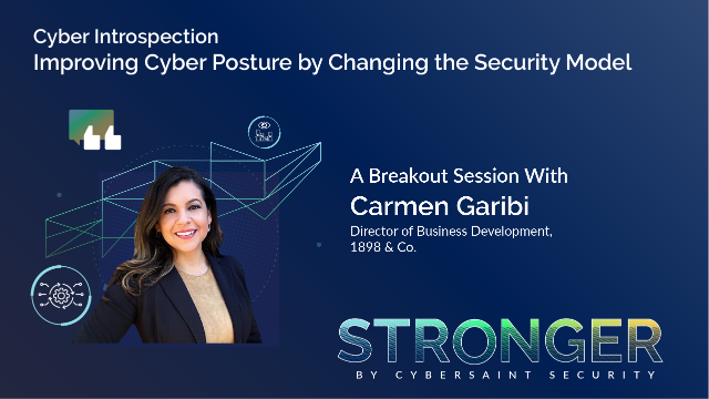 Cyber Introspection: Improving Cyber Posture by Changing the Security Model