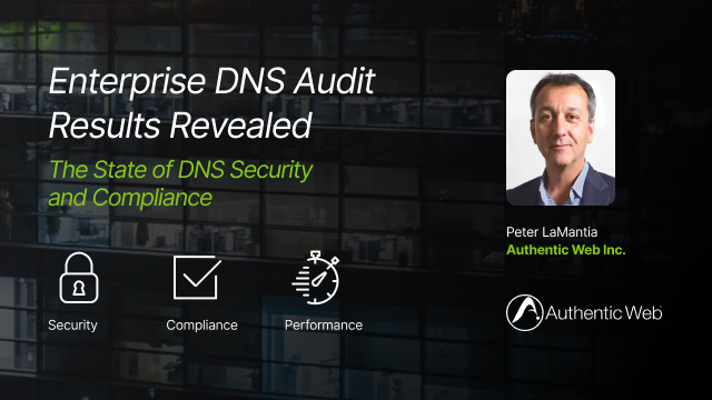 Enterprise DNS Audit Results Revealed: The State of DNS Security and Compliance