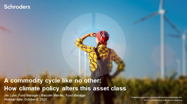 A commodity cycle like no other: How climate policy alters this asset class
