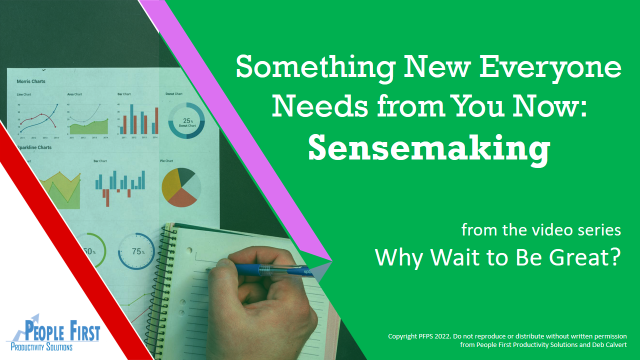 Something New Everyone Needs from You Now: Sensemaking