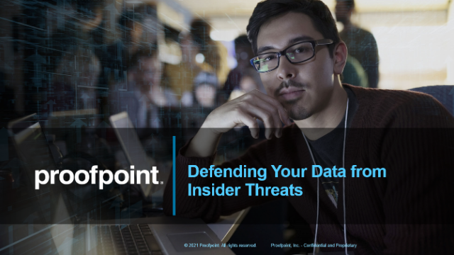 Defending Your Data from Insider Threats