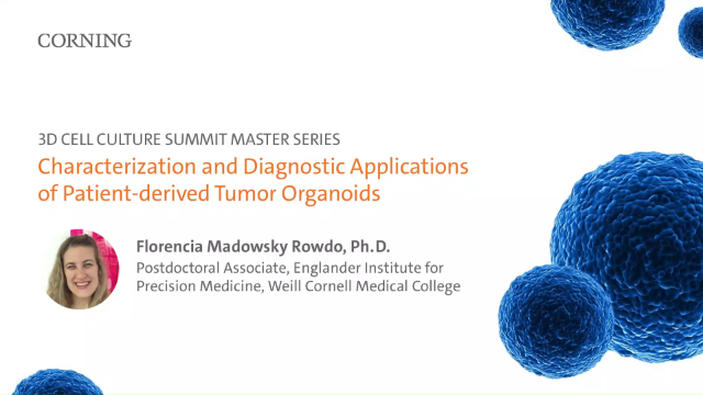 Characterization and Diagnostic Applications of Patient-derived Tumor Organoids