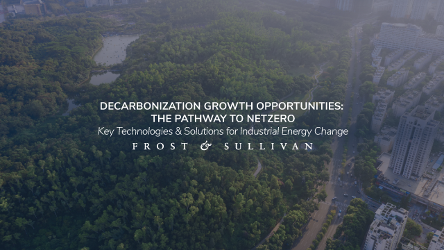 Decarbonization Growth Opportunities: The Pathway to NetZero