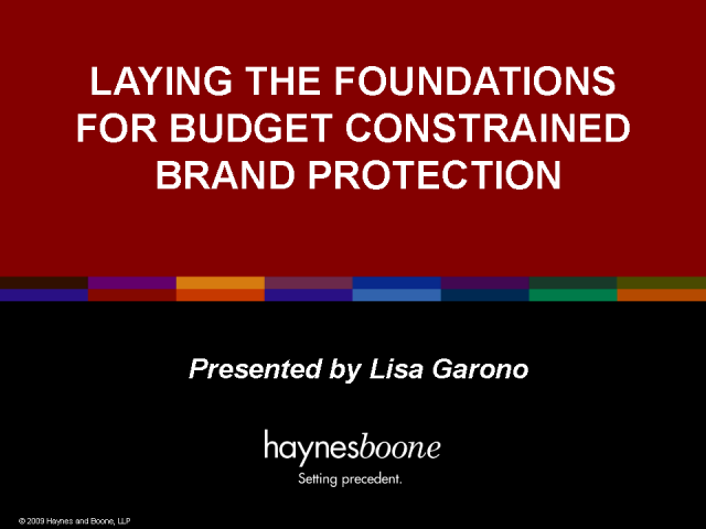 Laying the Foundations for Budget Constrained Brand Protection