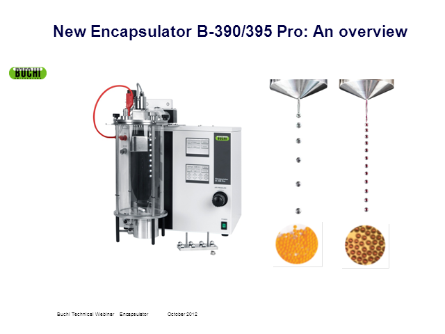 NEW Encapsulator - An overview