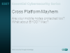 What does Cross Platform Protection Mean Today?