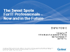 The Sweet Spot for IT Professionals-Today and in the Future