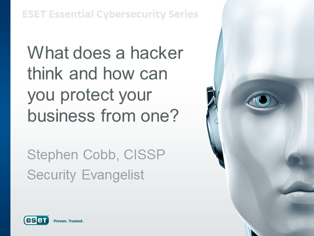 What a Hacker Thinks and how to Protect Your Business from one?