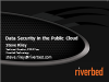 Data Security in the Public Cloud