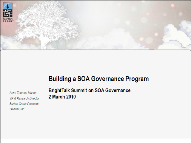 Building a SOA Governance Program