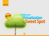 Finding Your Virtualization Sweet Spot