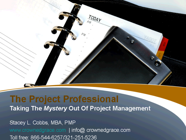The Project Professional - Part II