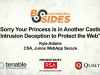 Your Princess is in Another Castle: Intrustion Deception to Protect the Web