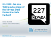 How to Comply with Nevada's New Data Protection Law - NRS 603A
