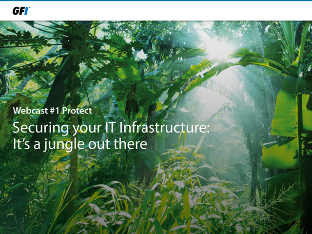 Securing your IT Infrastructure: It's a Jungle Out There