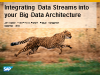 Session Three: Integrating Data Streams into your Big Data Architecture