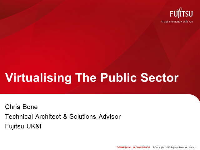 Virtualizing the Public Sector