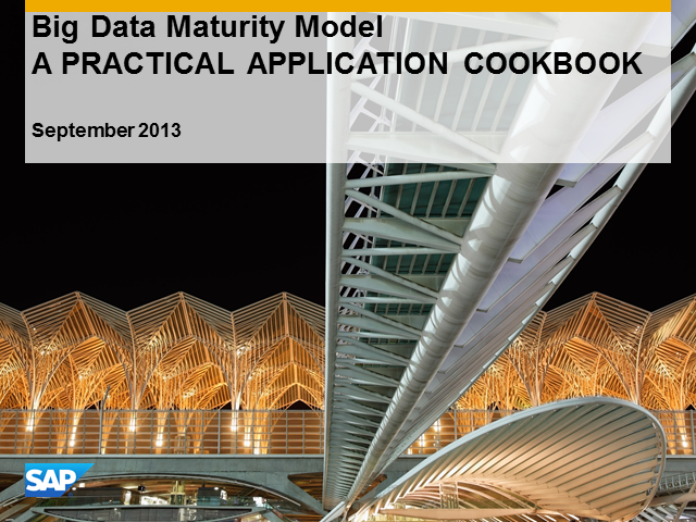 Big Data – Big Data Maturity Model