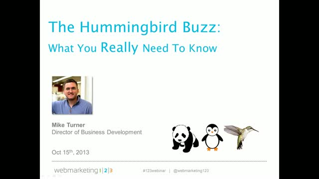 The Google Hummingbird Buzz: What You Really Need to Know