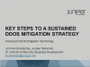 Key Steps To A Sustained DDoS Protection Strategy
