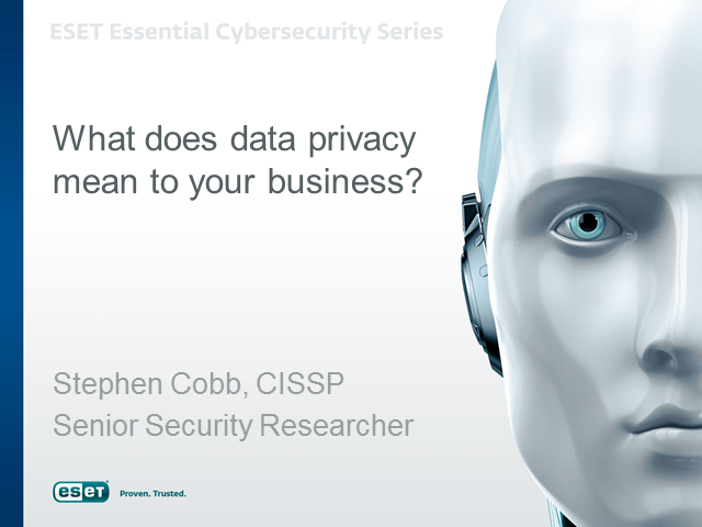 What Does Data Privacy Mean for Your Business?