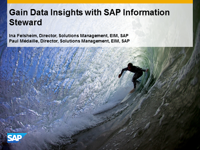 Gain Data Quality Insights with SAP Information Steward