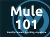 Mule 101: Rapidly connect anything, anywhere